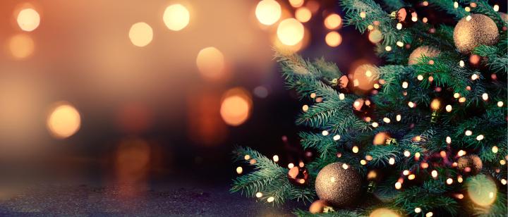 Los lotes de navidad más demandados.